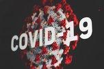 【新型コロナウイルス】パンデミック宣言により仮想通貨は大暴落!安全資産は現金なのか?
